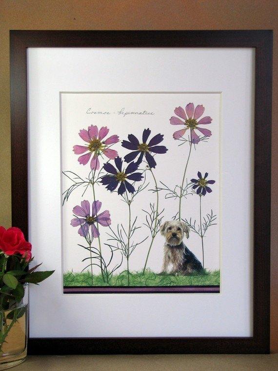 гербарий, засушенные цветы, декор для дома, украшения своими руками для дома,