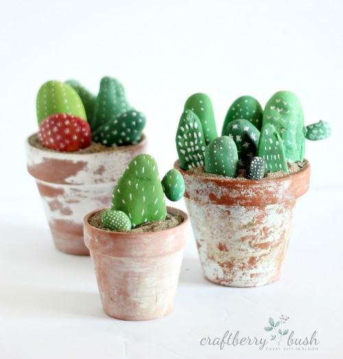 kaktusy-iz-kamnej (2)