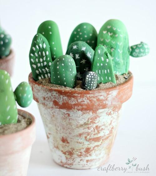 kaktusy-iz-kamnej (3)