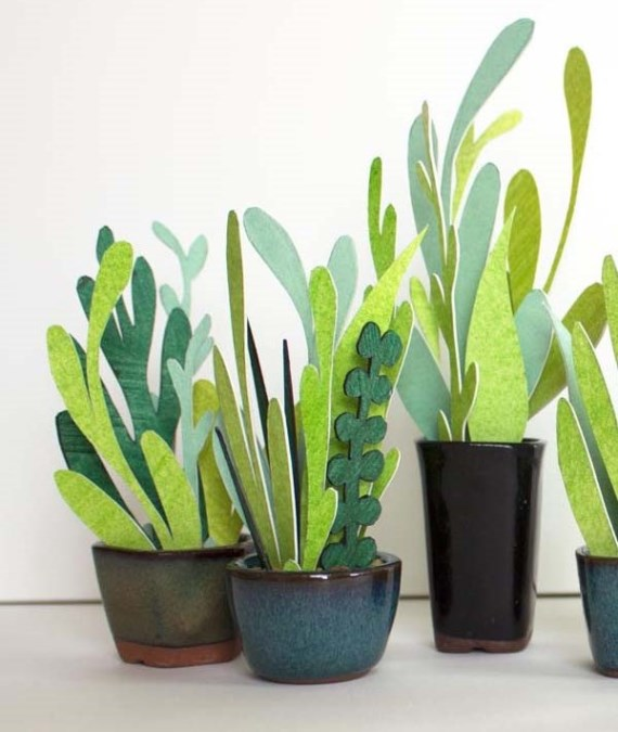 kaktusy-i-sukkulenty-iz-bumagi-i-kartona (2)
