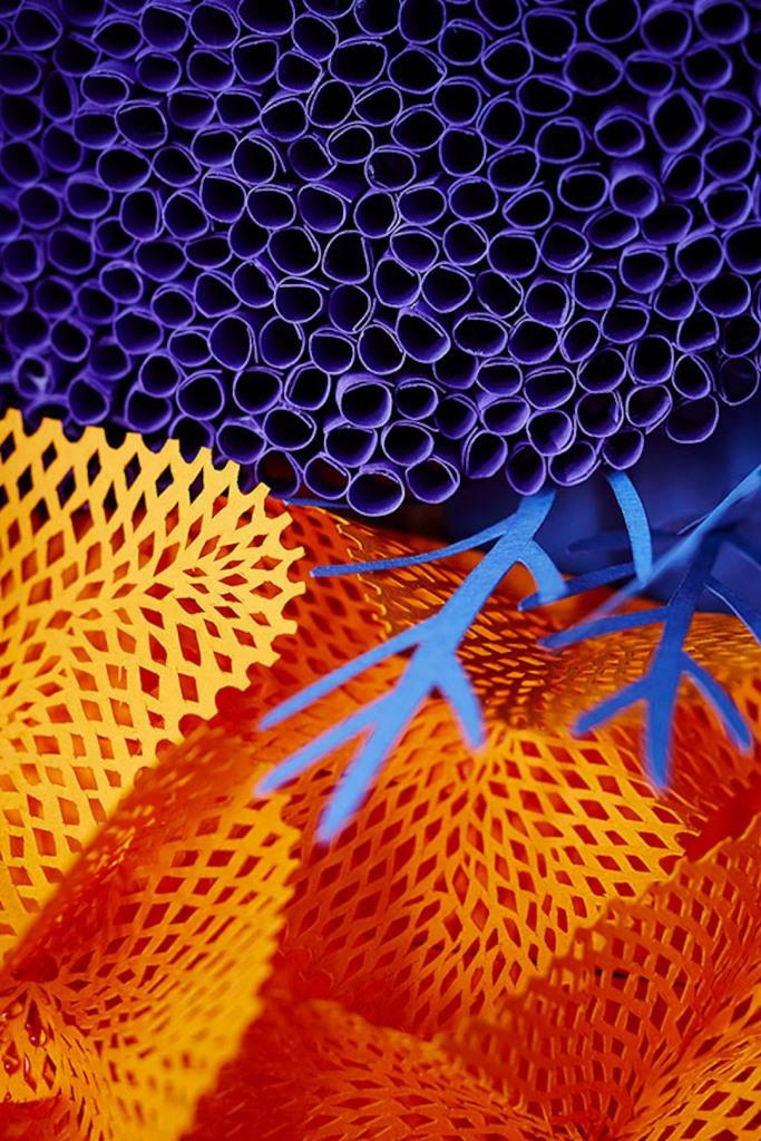 Коралловый риф из бумаги руками художника